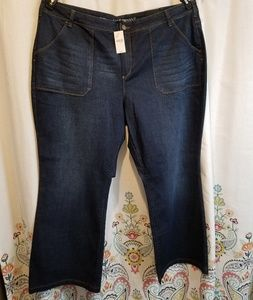 Nwt mid rise flare lane Bryant jeans size 28